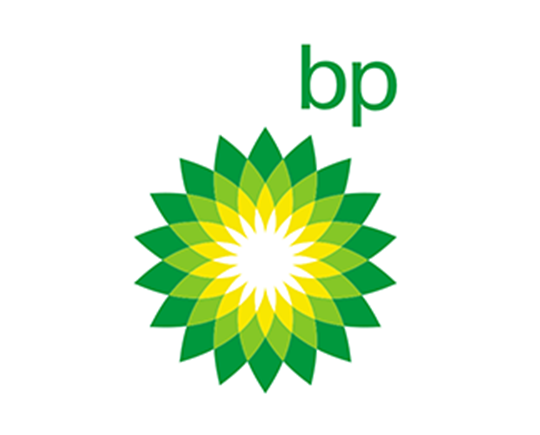 BP - Strategic Partner